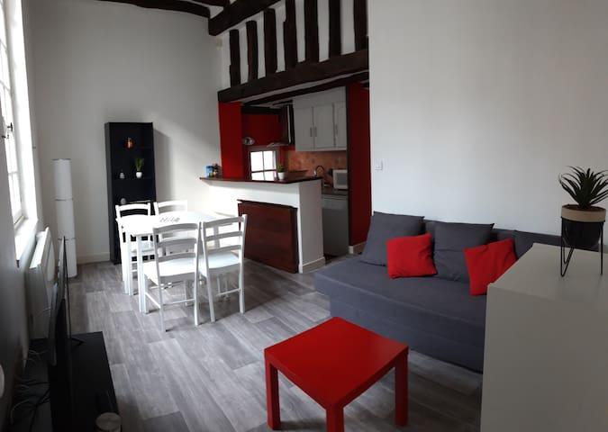 Appartement au cœur de Tours