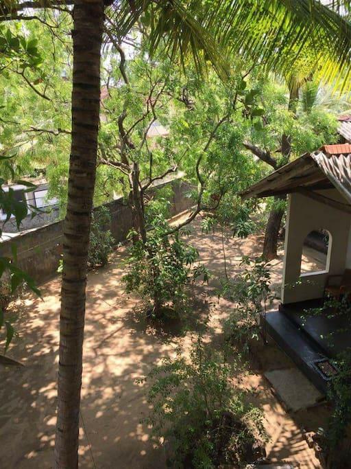 Cabana and garden area