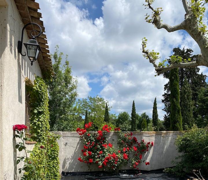 Visit Aix-en-Provence & the Luberon