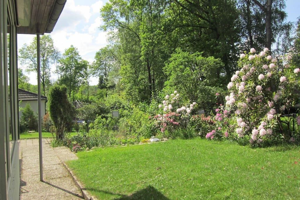 im vorderen Gartenbereich
