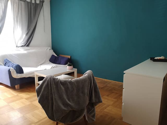 Sweet and Cozy Room  near the center of Vienna
