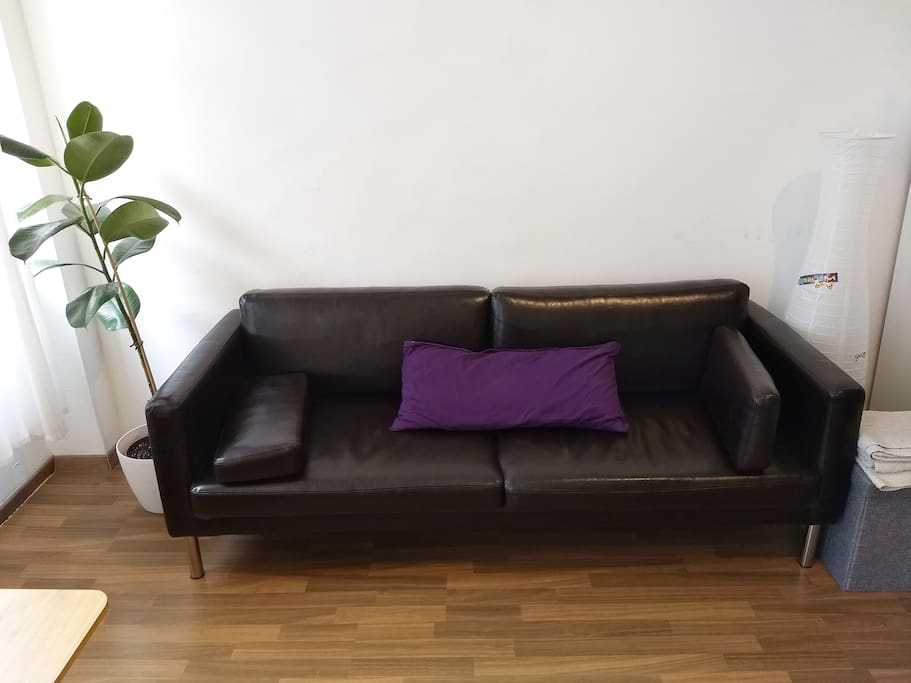Leather couch. It is very easy to disassemble the pillows to get a good bed feeling.