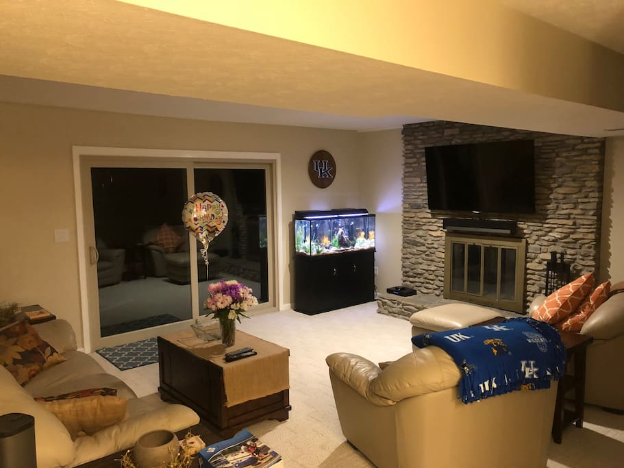 Entry level TV Room