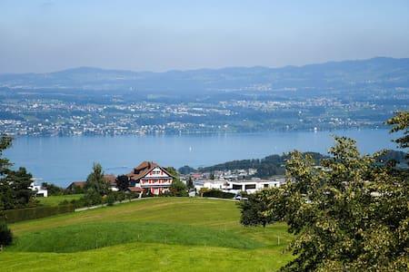 Zimmer mit traumhafter Aussicht auf den Zürichsee