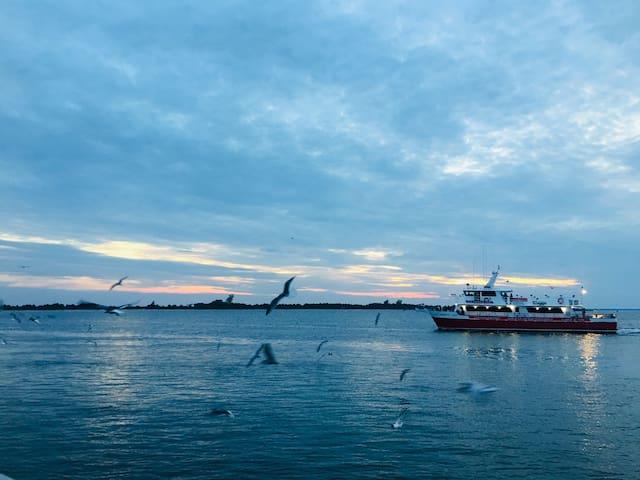 Evening sunset cruise