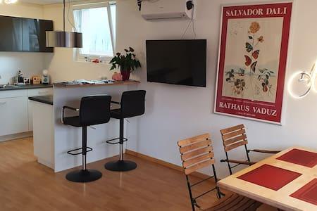 Ruhig & zentral in Schaan - Wohnung bis 4 Personen