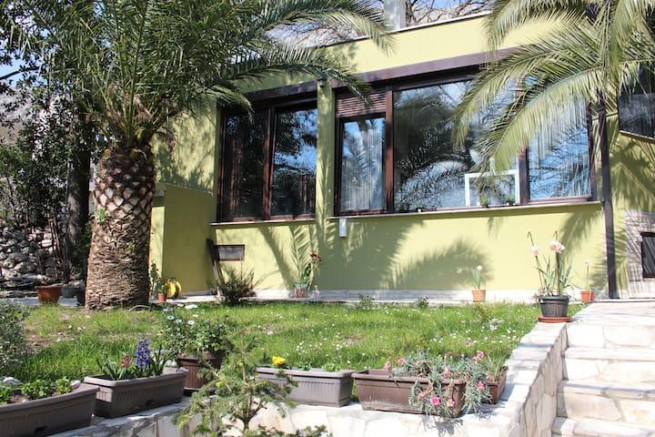 Holiday Home Green - Kotor - Ev