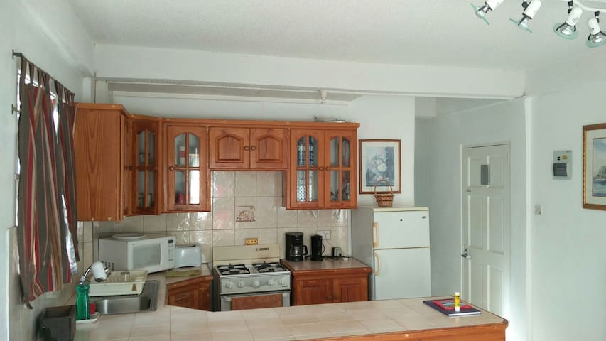 Point Saline Apartment - Saint George - Apartment