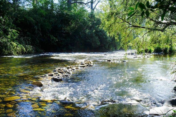 Barrington River Lodge
