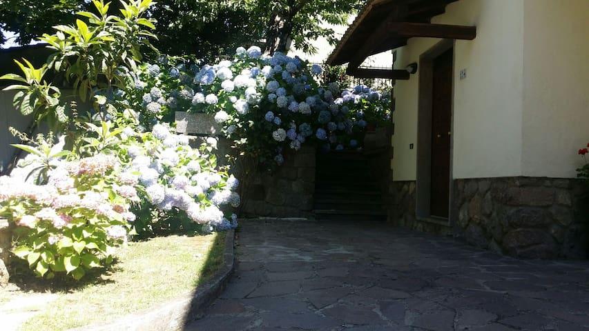 """""""LA VILLETTA IN MONTAGNA"""" - Vivo D'orcia - Apartamento"""