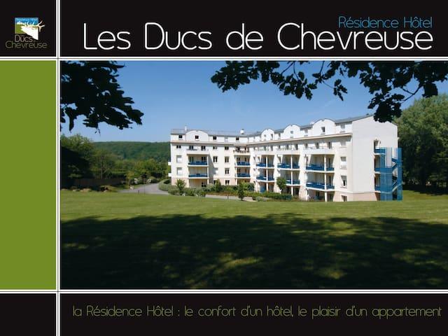 Beau Studio avec terrasse 2 pers -24m2-  Chevreuse - Chevreuse