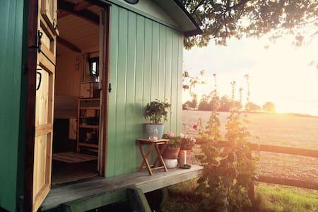 Cosy Shepherd's Hut near Chieveley - Newbury - 小屋