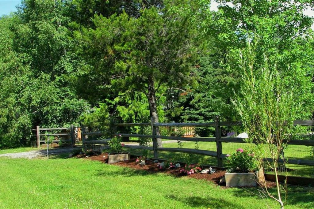 Street view of the front yard.