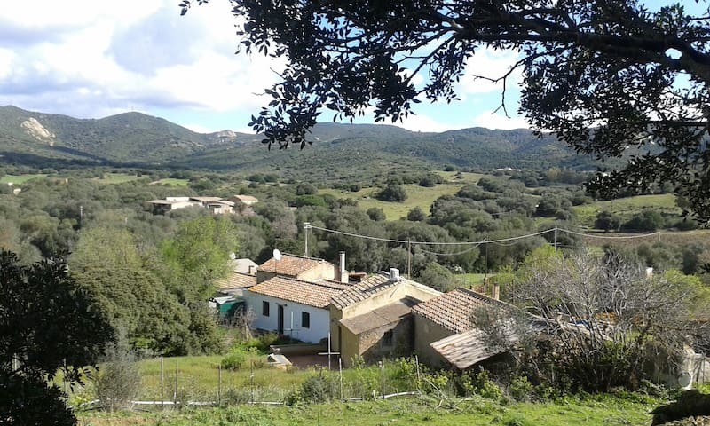 Farmhouse 1 km from southernmost sardinian coast