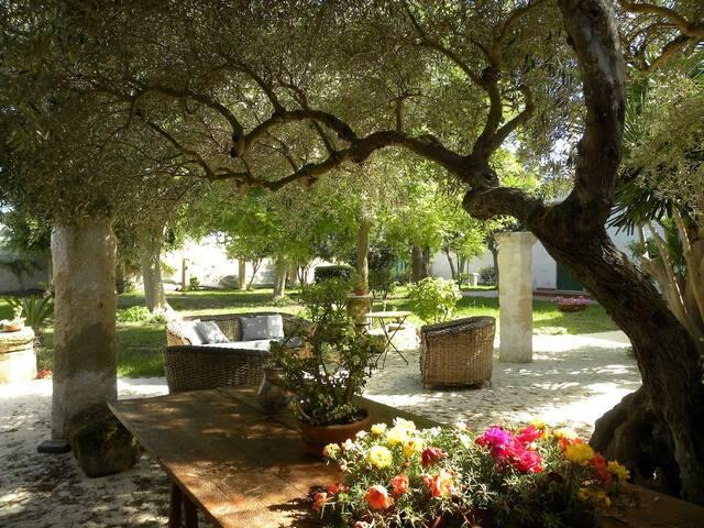Il tuo giardino segreto nel cuore dello Stagnone