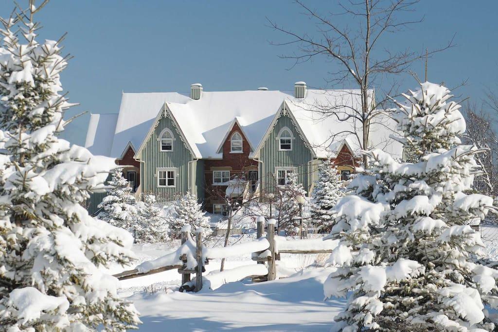 Snowbridge Townwhouses