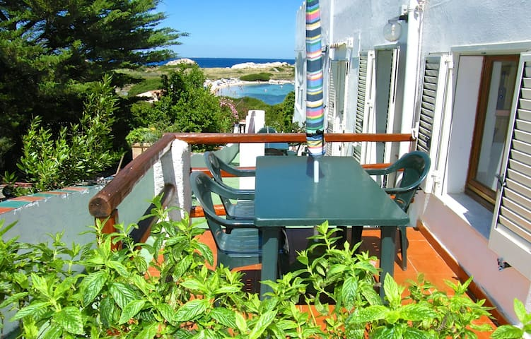 SEA VIEW FEW STEPS FROM THE BEACH - Santa Teresa Gallura - Apartemen