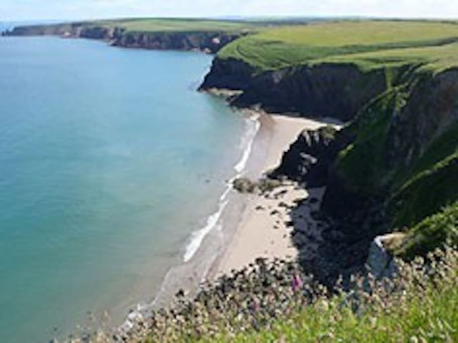 Magical Musslewick Sands - just 15 mins walk form house