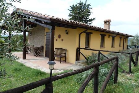 Casa Floriana - Monte Santa Maria Tiberina - Inap sarapan