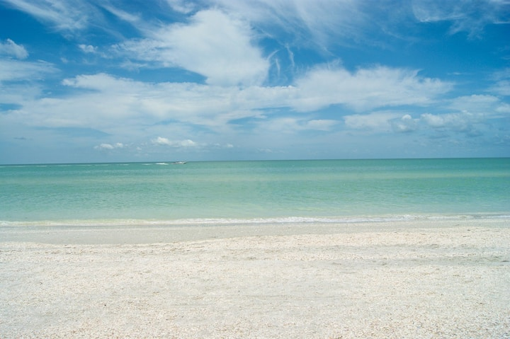 Shell Island Beach Club #5B