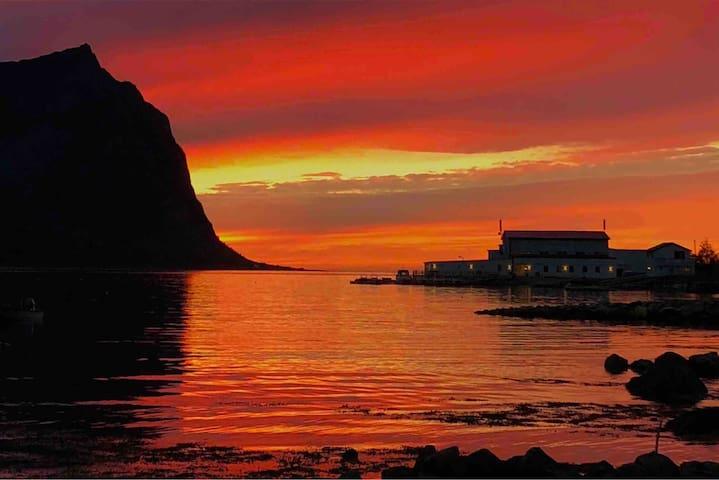 Steinfjord Senja