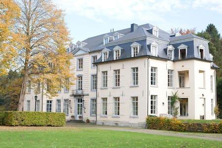 spacious room in a restored castle  - Neerijse - Huoneisto
