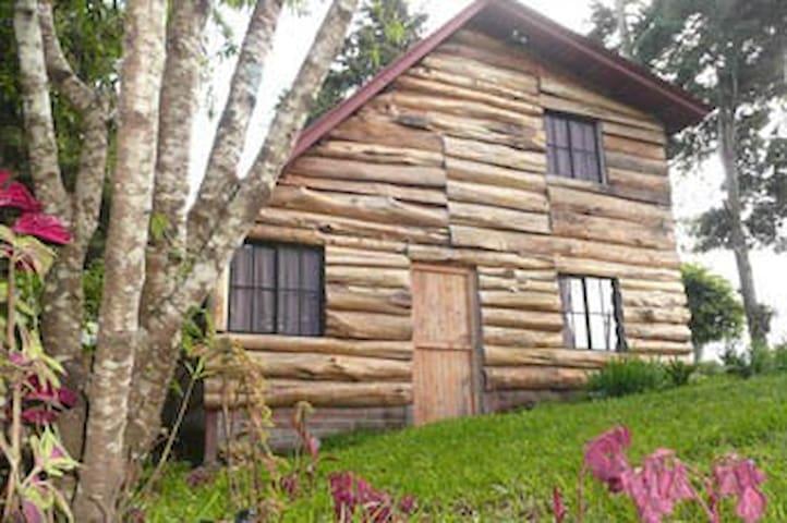 Laguna Verde Guest House - Apanhecat - Blockhütte