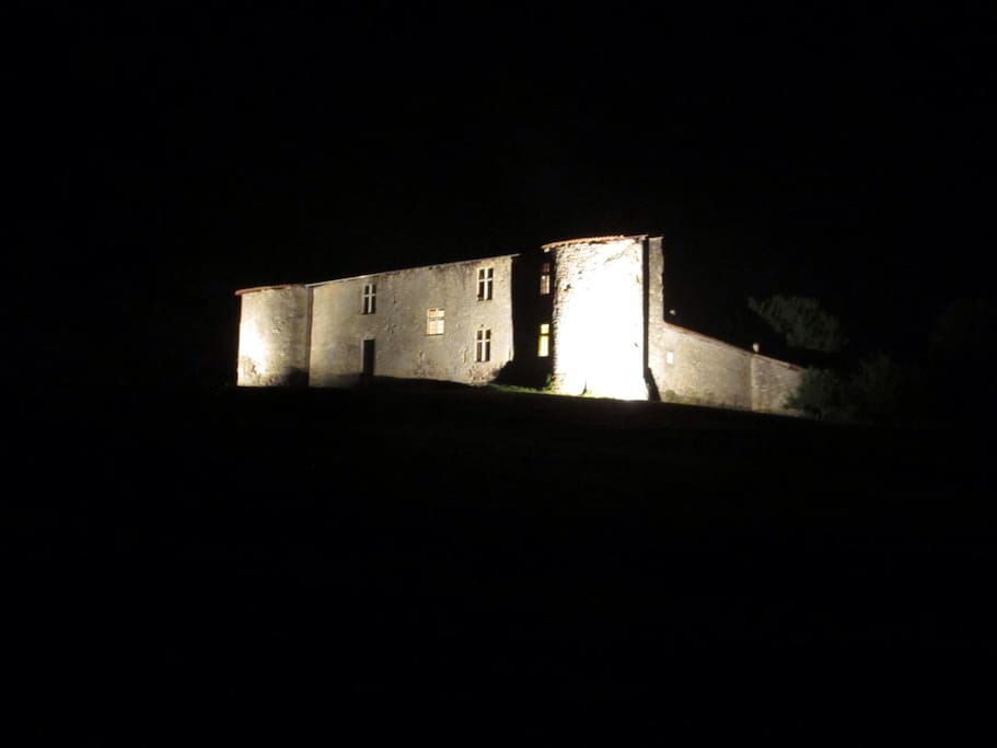 Castle by night!!