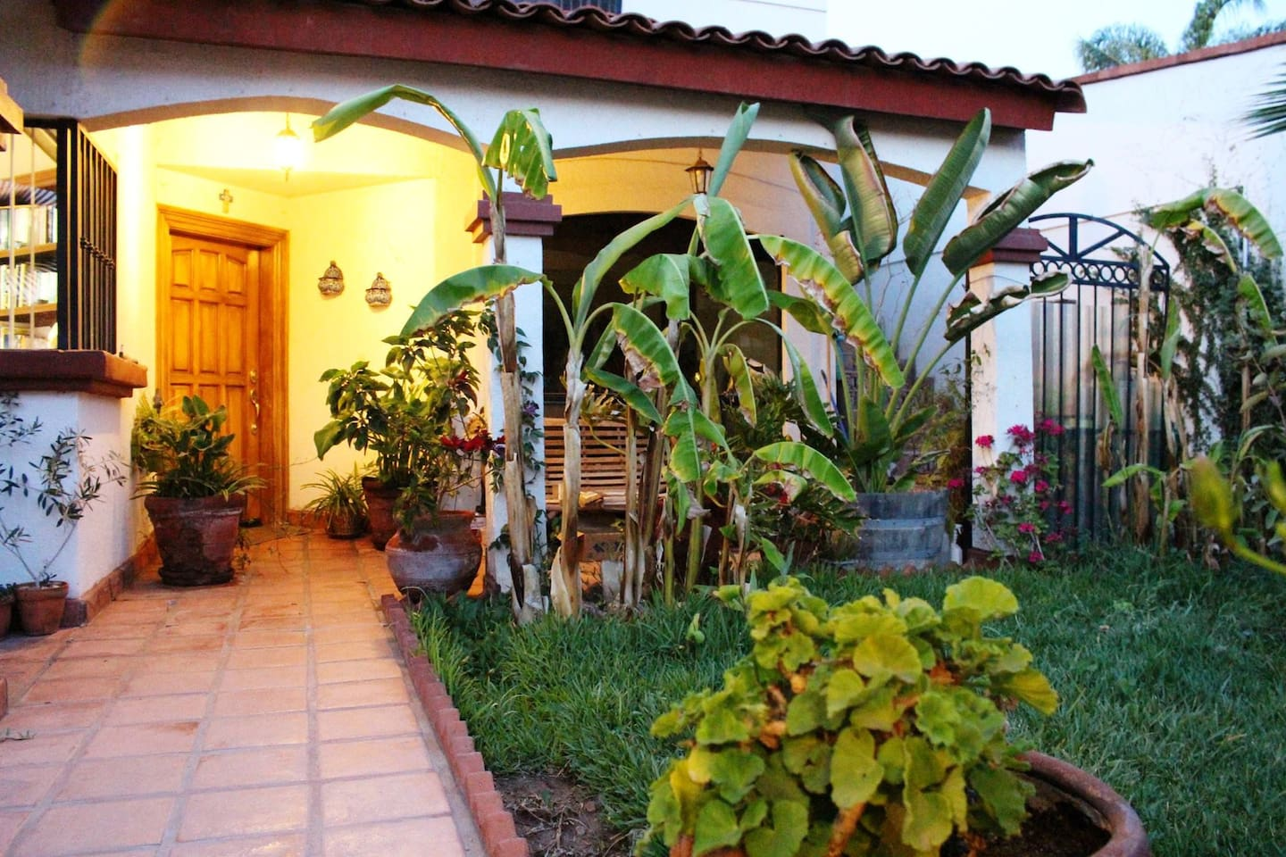 Front yard with banana trees, your way to casa Julia