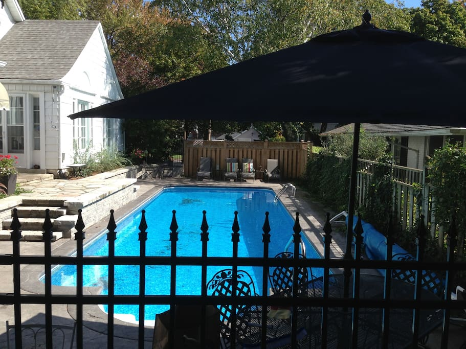 Stunning heated saltwater pool
