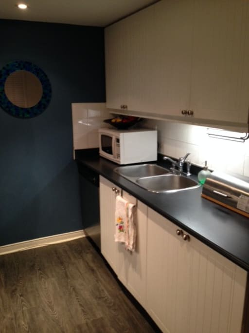 Full galley style kichen with dishwasher and microwave