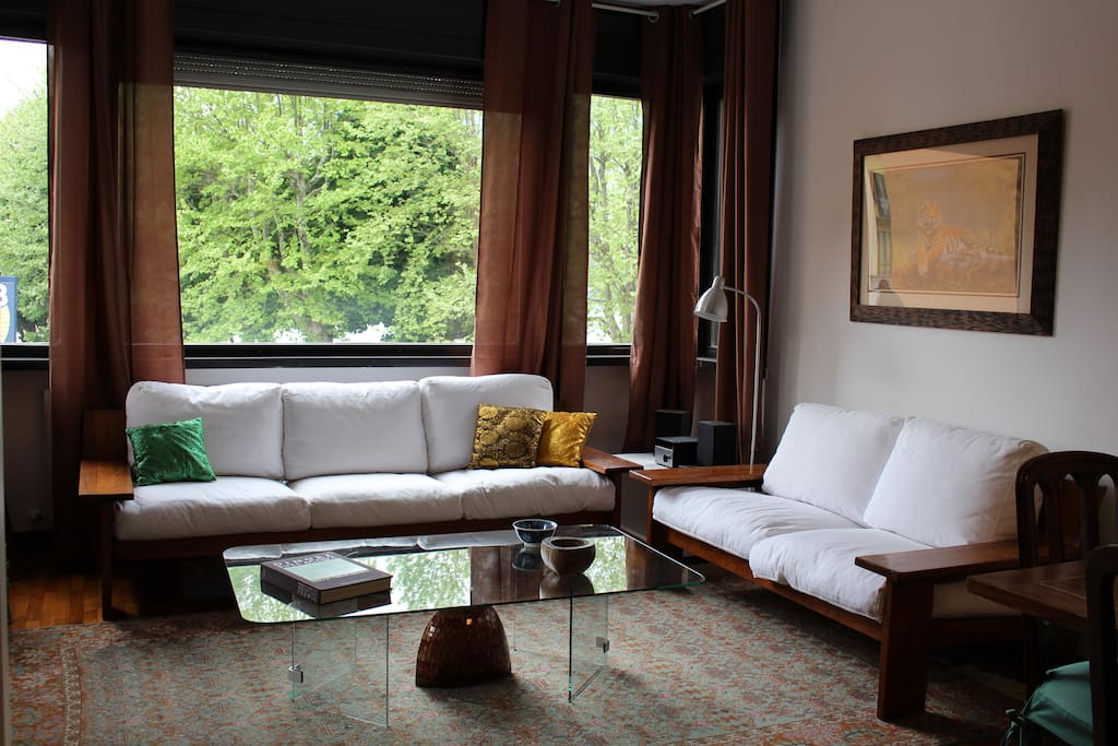 Living room with terrace overlooking the lake