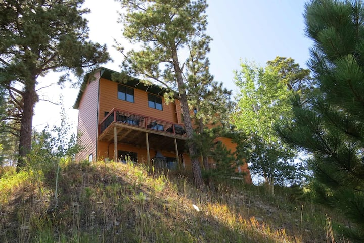 Black Hills Mountain View Home in Lead