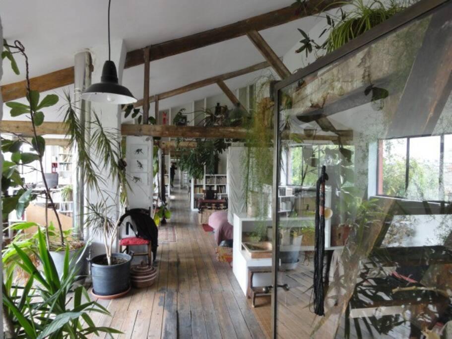 Loft 350 m2 avec plantes et jardin maisons louer montreuil le de france france - Maison rouen jardin des plantes montreuil ...