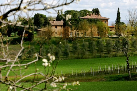 Warm, huge, Umbrian country aprtmt  - Castiglione del Lago