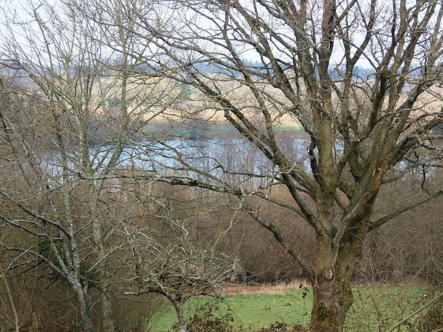 Lake view from the house