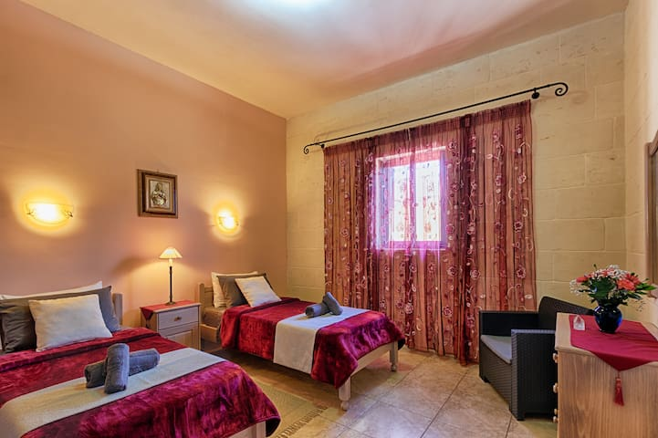 Deluxe Twin Room with Bathroom