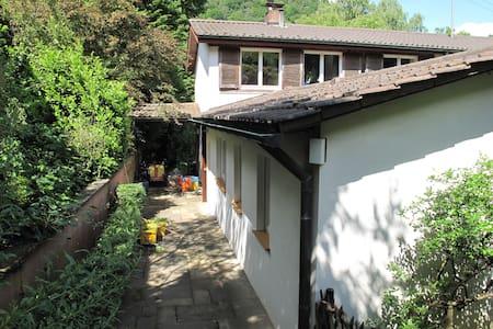 Ruhige, stadtnahe Wohnung im Grünen - Heidelberg