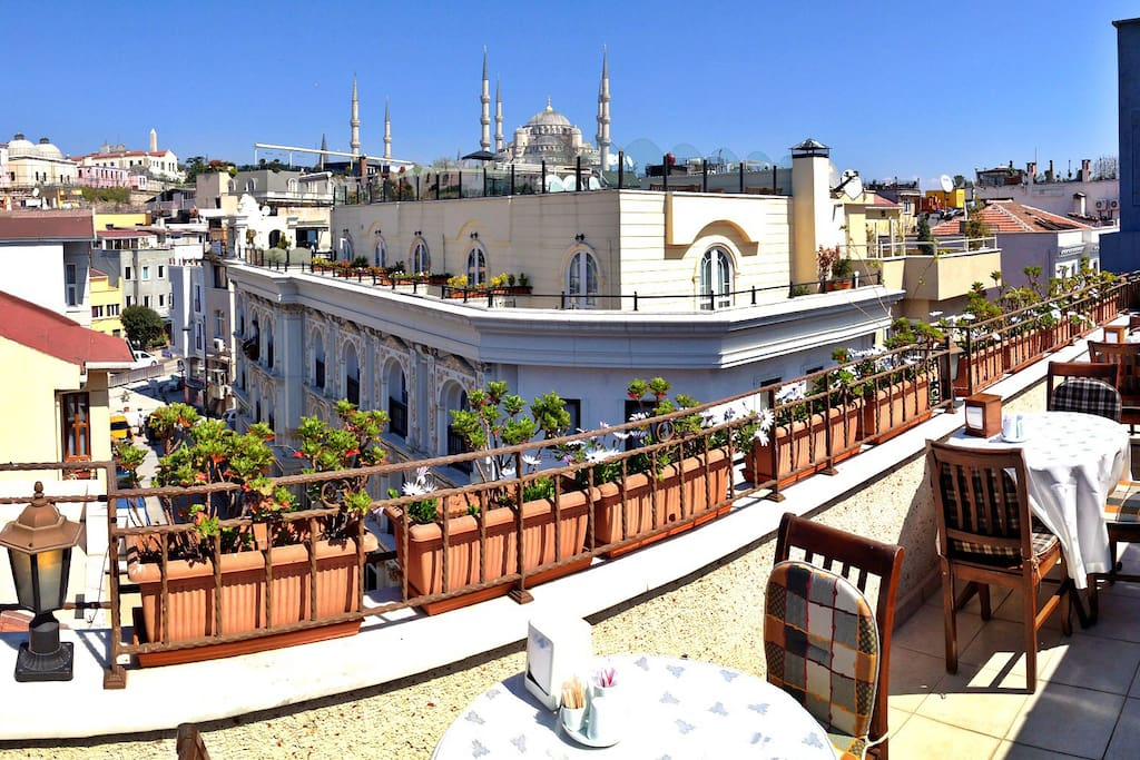 Great view of Blue Mosque from terrace.
