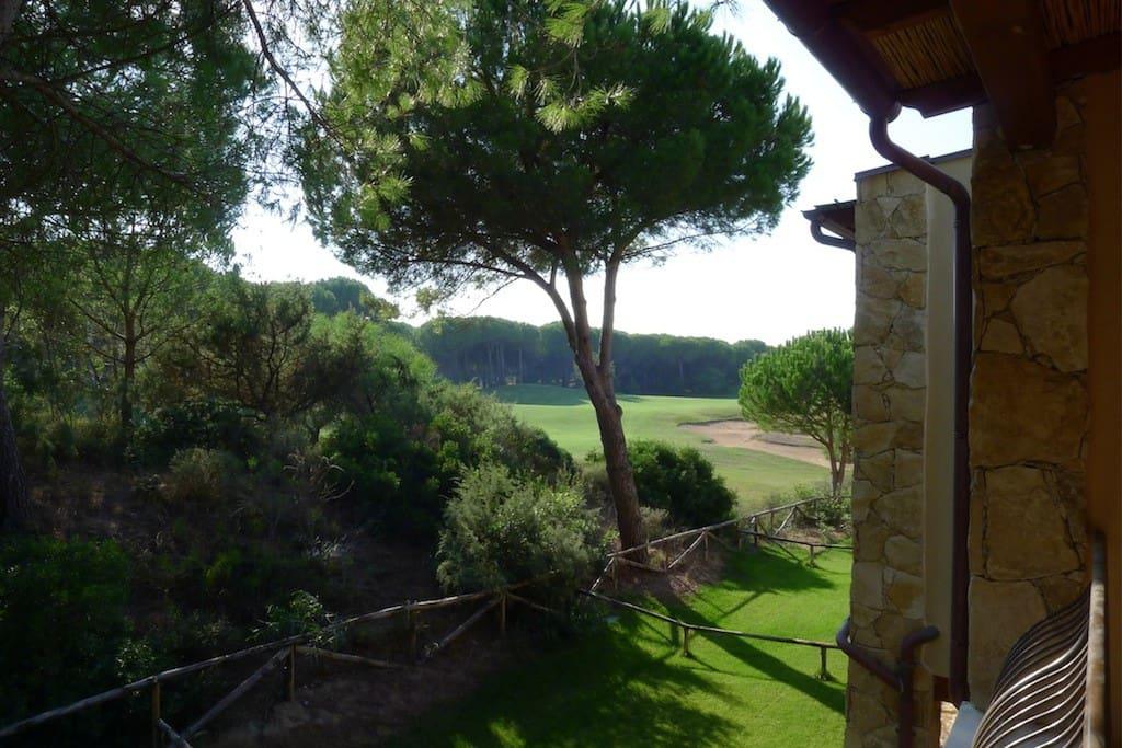 Vista dalla terrazza e dalla zona giorno della casa che manifesta la bellezza del verde dove è inserita la casa