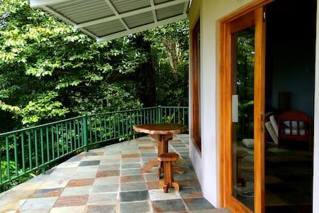 Jungle Retreat  - Puntarenas  - House