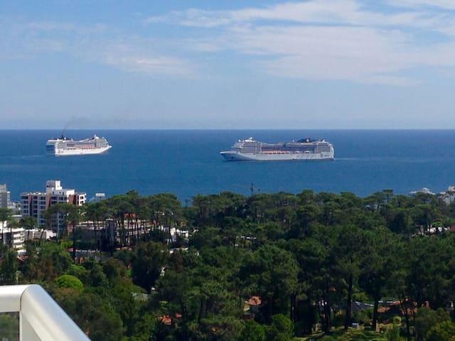 Punta del Este, Nuevo, Vista al mar