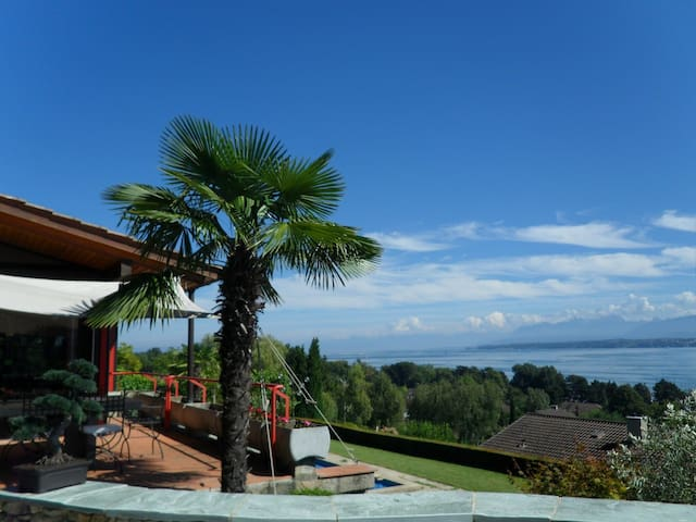 Panoramic view and privacy