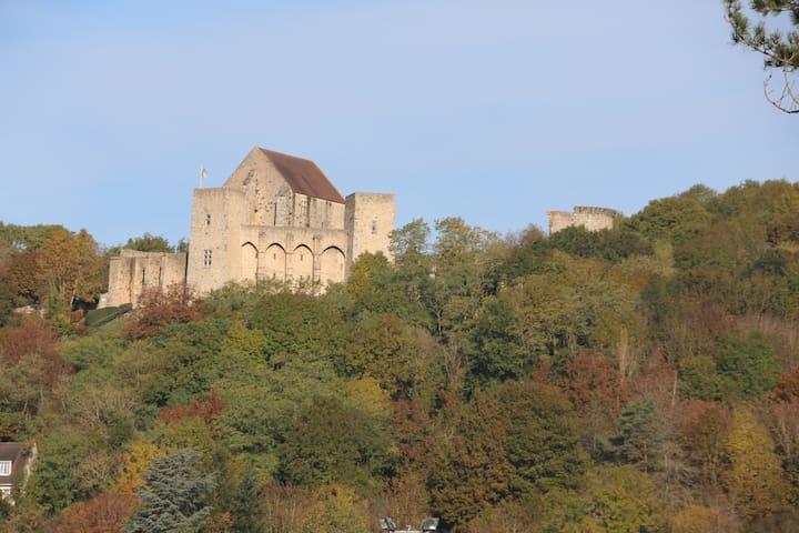 Habitation de charme Lac Beauséjour - Saint-Rémy-lès-Chevreuse - House