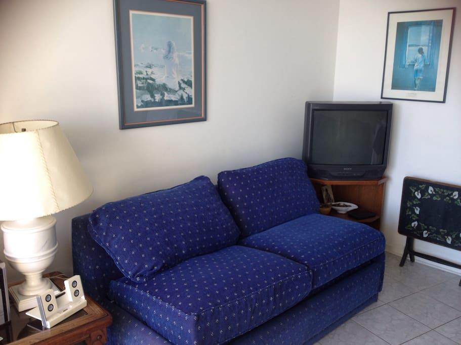Living con sofá cama de dos plazas el cual incluye las frazadas y ropa de cama lo cual facilita el montaje y desmontaje diario para el tercer huésped