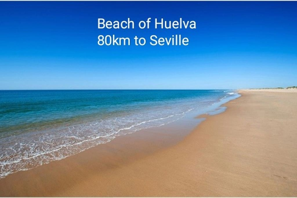 Just 50min. By car You can do a little trip to the beautiful beach of Huelva :)