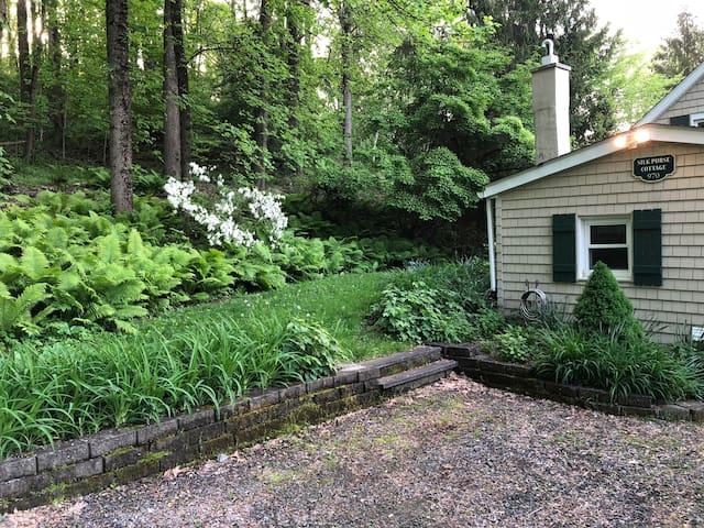 Silk Purse Cottage in spring