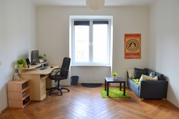 Spacious room next to City Center and Prater Park - Wenen - Appartement