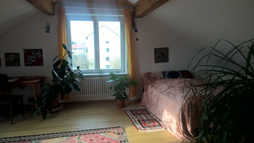 generous cozy loft near town centre - Göttingen - Dom