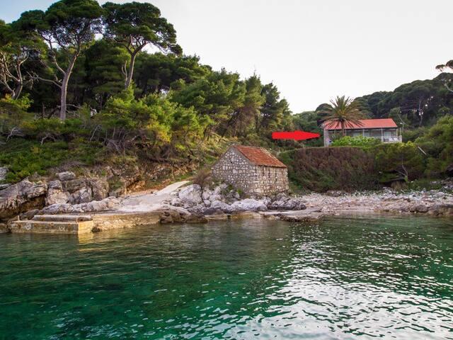 DUBROVNIK KOLOCEP Villa2 beachfront - Dubrovnik - Apartmen